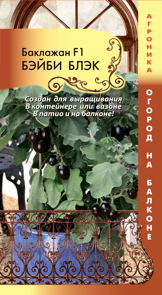 Баклажаны для выращивания на балконе 992