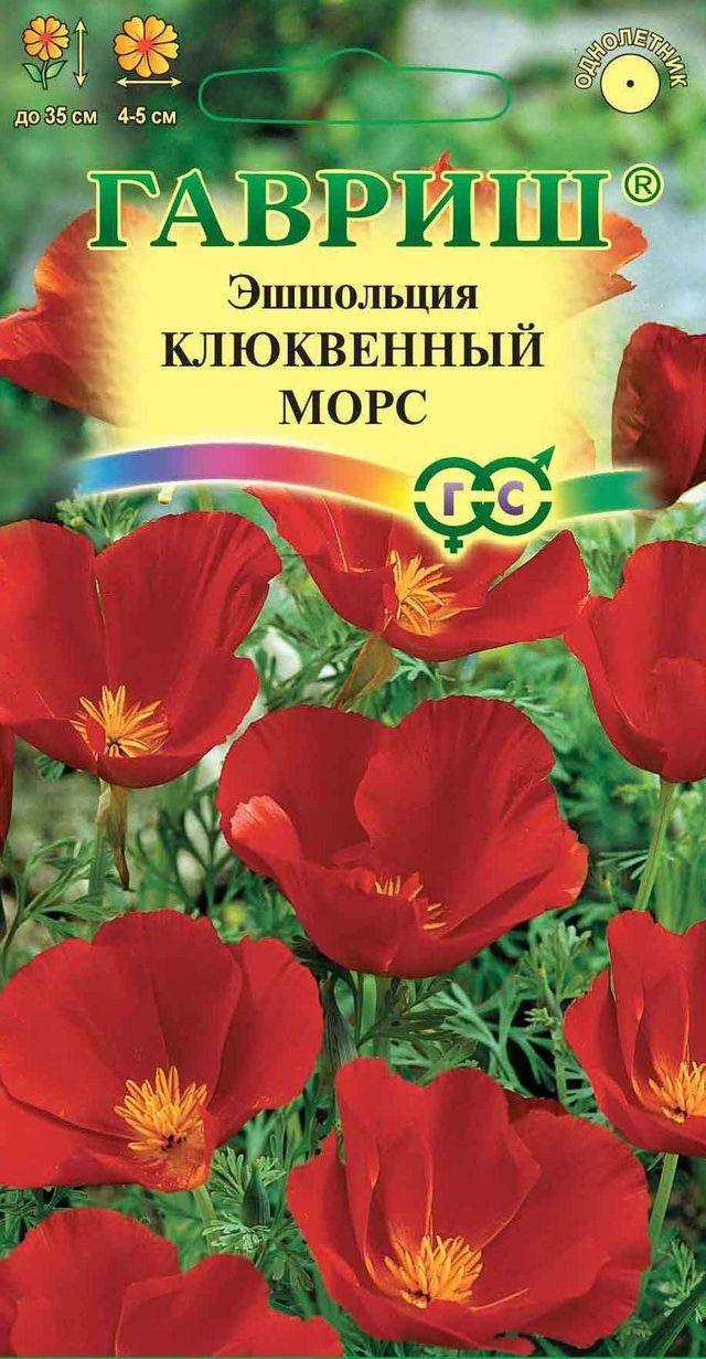 Цветы эшшольция описание